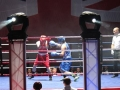 Boxing Tournament | Sound & Lighting Hire | Pulse Roadshow